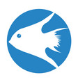 exotic fish silhouette icon vector image