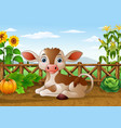 cartoon cow sitting in the farm vector image