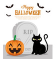 happy halloween card with black cat and pumpkin vector image