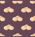 tasty homemade meat dumplings of wholemeal flour vector image vector image