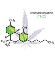 thc molecule on white vector image vector image