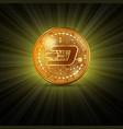 dash golden coin vector image vector image