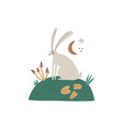 funny hand drawn hare sitting in lawn mushrooms vector image