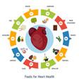 healthy heart foods infographics healthy heart vector image vector image