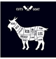 meat cuts - goat diagrams for butcher shop vector image vector image