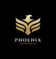 phoenix logo eagle and bird logo template vector image vector image