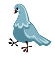 pigeon or dove isolated bird peace symbol flying vector image