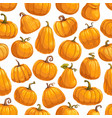 pumpkin vegetables gourds and squashes pattern vector image vector image
