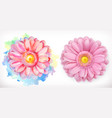 spring pink flowers daisy watercolor and 3d vector image vector image