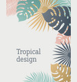 tropical leaf template in pastel colors summer vector image vector image