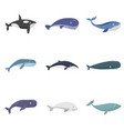 whale blue tale fish icons set isolated vector image