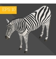 zebra isometric vector image vector image