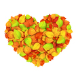 Big autumn heart vector image