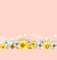 cute background with chamomile flowers can vector image