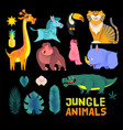 cute jungle animals set exptic wild collection vector image