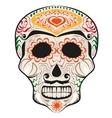 Day of Dead painted skull Dia de Muertos vector image vector image