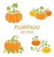 flat pumpkin icons set vector image vector image