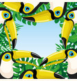 frame toucan birds and tropical leaves vector image vector image