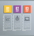 infographic statistics with business elements vector image