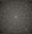 network of several cobwebs on a gray background vector image