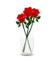 red roses with green leaves vector image vector image