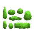set of garden green bushes vector image vector image