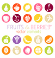 Set of round icons with fruits and berries vector image vector image