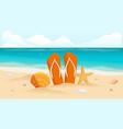 shell on beach sunburst lettering vector image