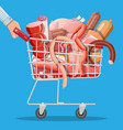 shopping supermarket cart full meat vector image