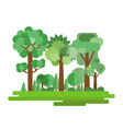 forest in a flat style vector image