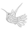 adult coloring bookpage a cute flying hummingbird vector image