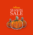 bright poster for autumn sale vector image vector image