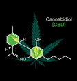 cbd molecule on black vector image