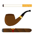 Cigarette pipe and cigar vector image vector image