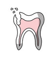 human tooth with decay vector image vector image