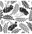 Rowan berry seamless texture Autumn vector image