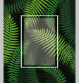 square frame with branches leaves background vector image vector image