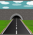 tunnel with road vector image vector image