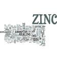 zinc text word cloud concept vector image vector image