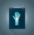 flat radiography icon vector image