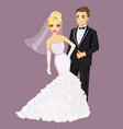 Beautiful Bride And Groom vector image