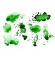 set green watercolor spots isolated on white vector image