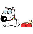 Smiling White Bull Terrier Dog With Bowl And Bone vector image vector image