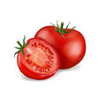 tomato and slice isolated on white photo-realistic vector image vector image