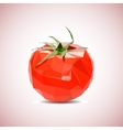 tomato background Low-poly style vector image vector image