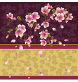 Background with sakura branch Japanese cherry tree vector image