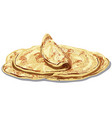 eastern baked pita bread vector image vector image