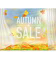 fallen leaves and curtains vector image