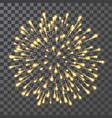 fireworks festival colorful firework vector image