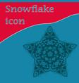 vinatge star-shape snowflake icon design vector image